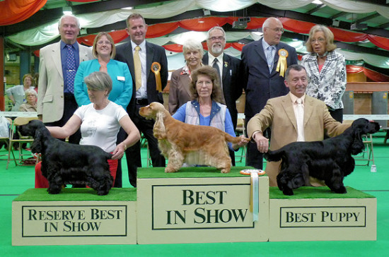 Best In Show line up 2011